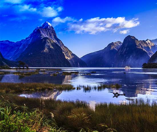 photo of Milford Sound landscape